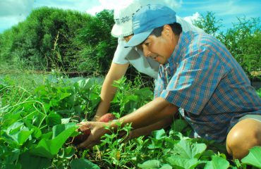 """Invitan a adherir a la ley de """"Desarrollo integral de la agricultura familiar, campesina e indígena"""""""